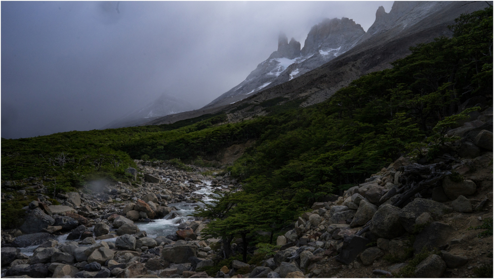 Patagonia STOMPED-52.jpg