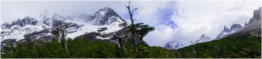 Patagonia STOMPED-50.jpg