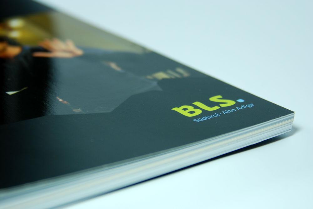 bls-take3-3.jpg