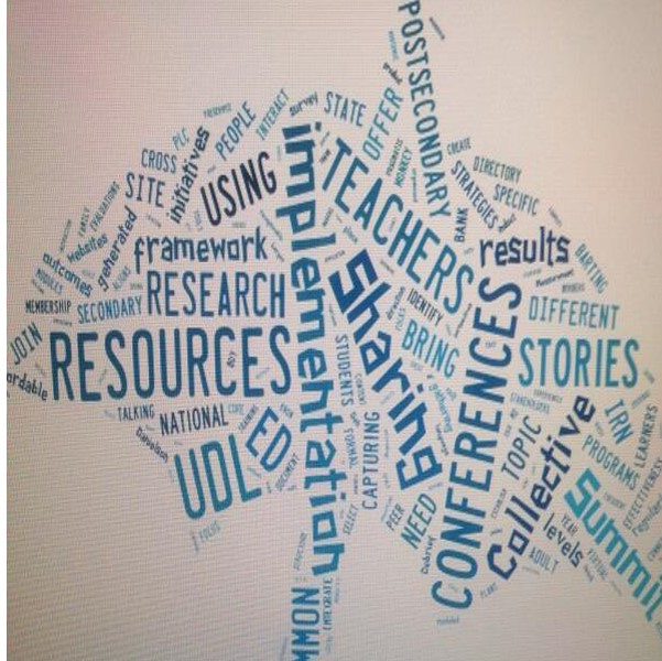 Participant Feedback Themes: Scenes from 2014 UDL-IRN Summit
