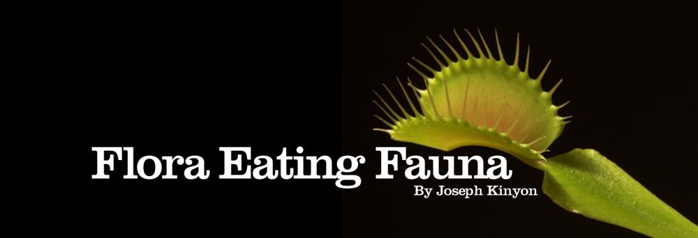 flora-eating-fauna-by-joseph-kinyon@2x.jpg