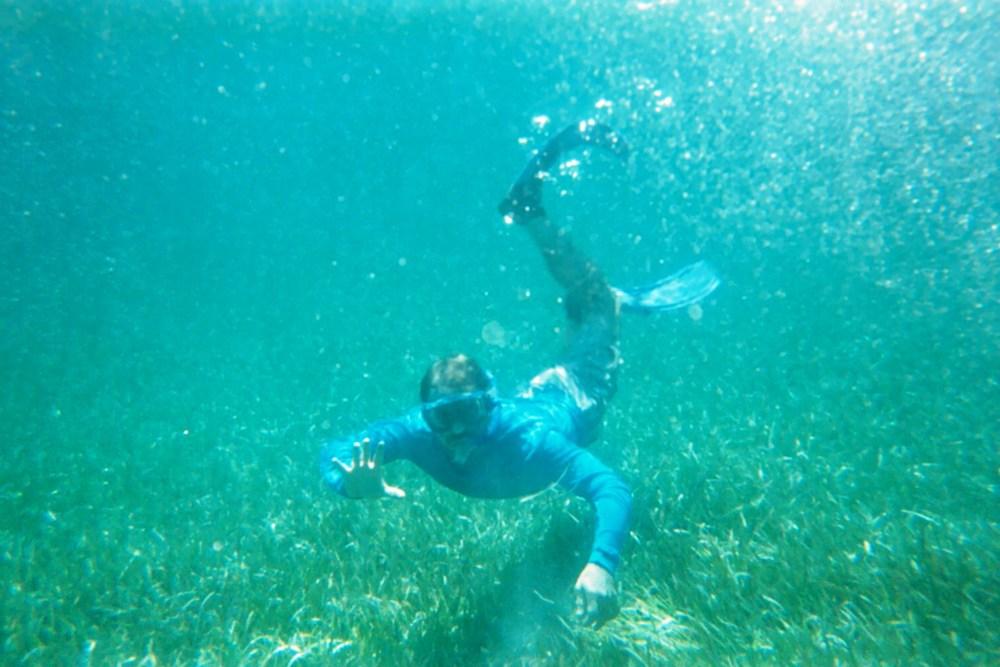 2015-Paul Underwater.jpg