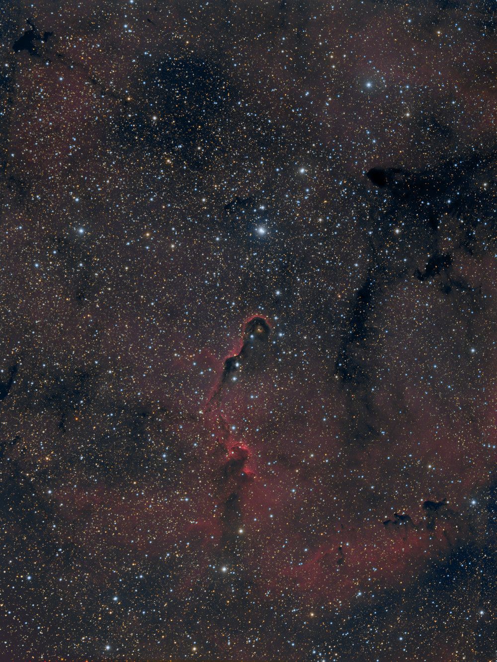 The Elephant's Trunk Nebula in HA,RGB,   click here for higher rez