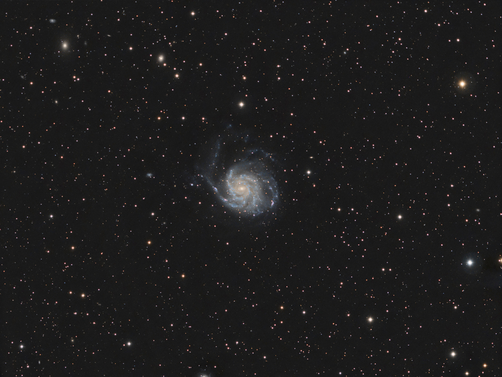 M101 full frame. Click to enlarge.