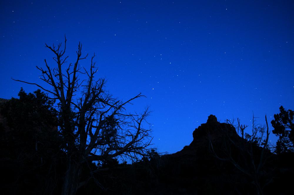 Sedona's Red Rock Canyon