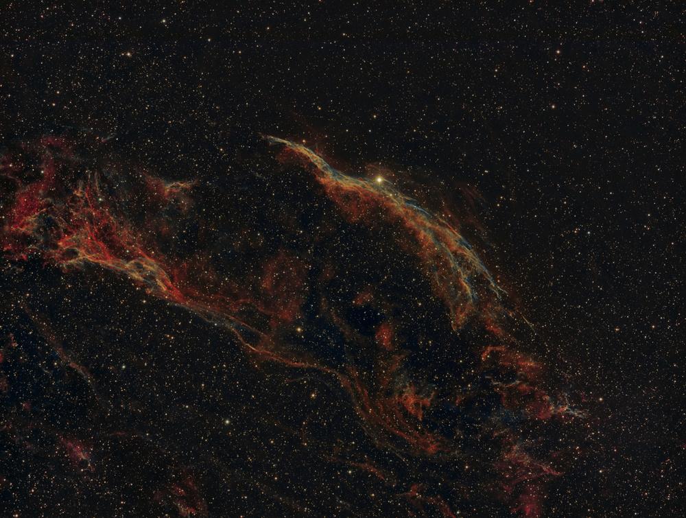 bi-colorVeil.jpg