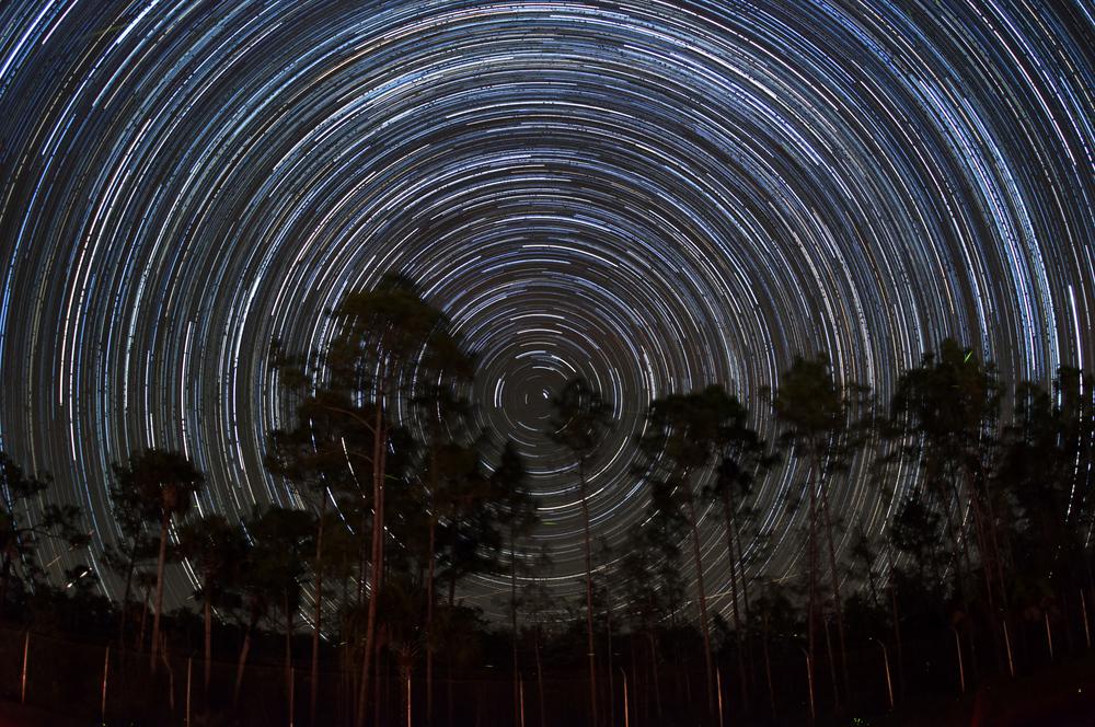 Big Cypress National Preserve    Star Trails