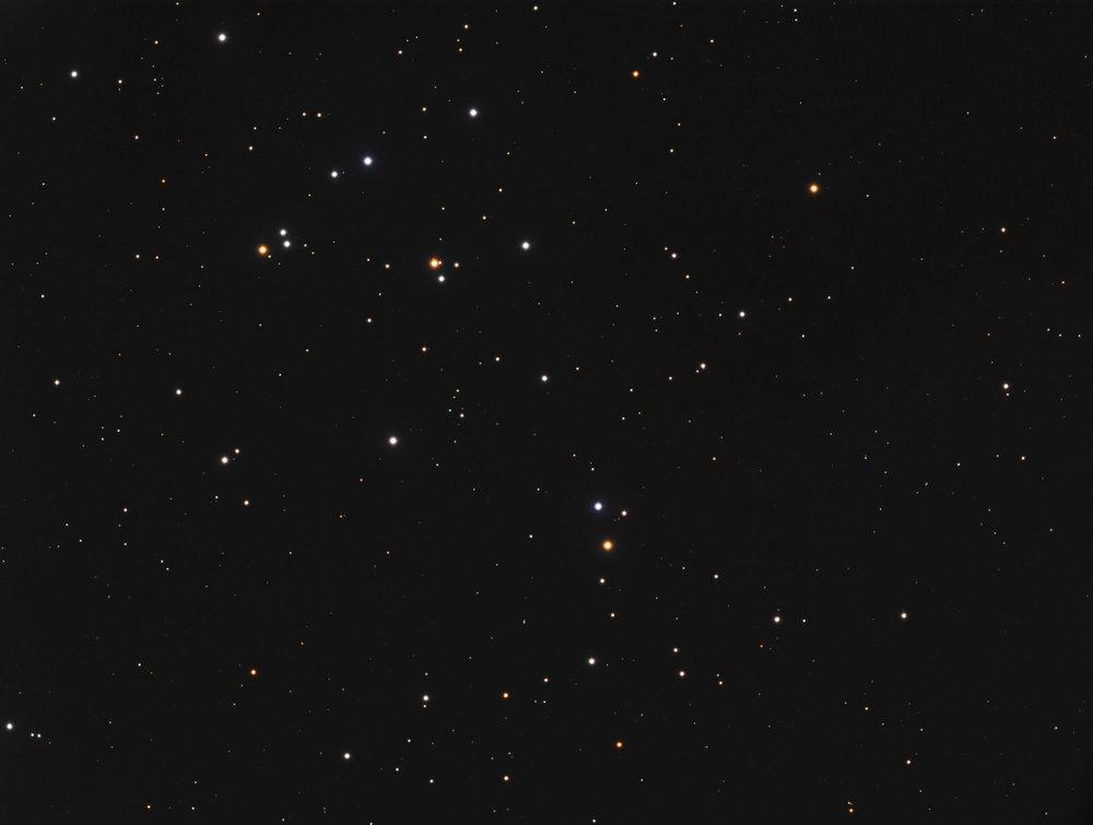 Beehive Cluster: Davie, Fl