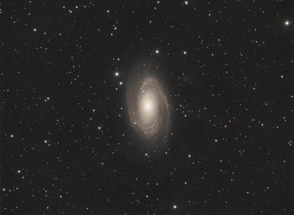 M81: Davie, Fl