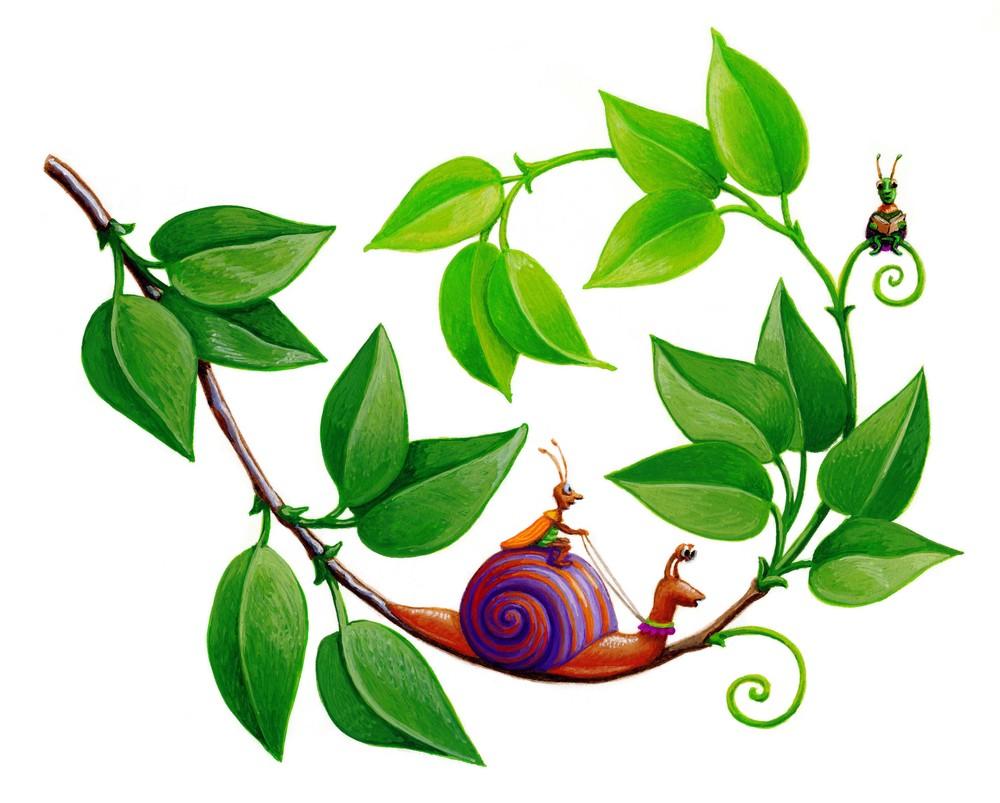 Busy Bugs-snail .jpg