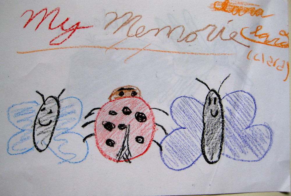 Student memory drawing of an insect.