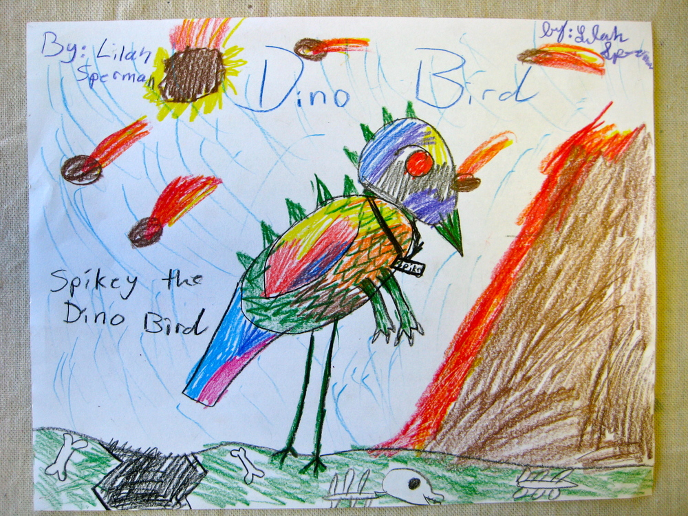 Third Grade Bird Drawing