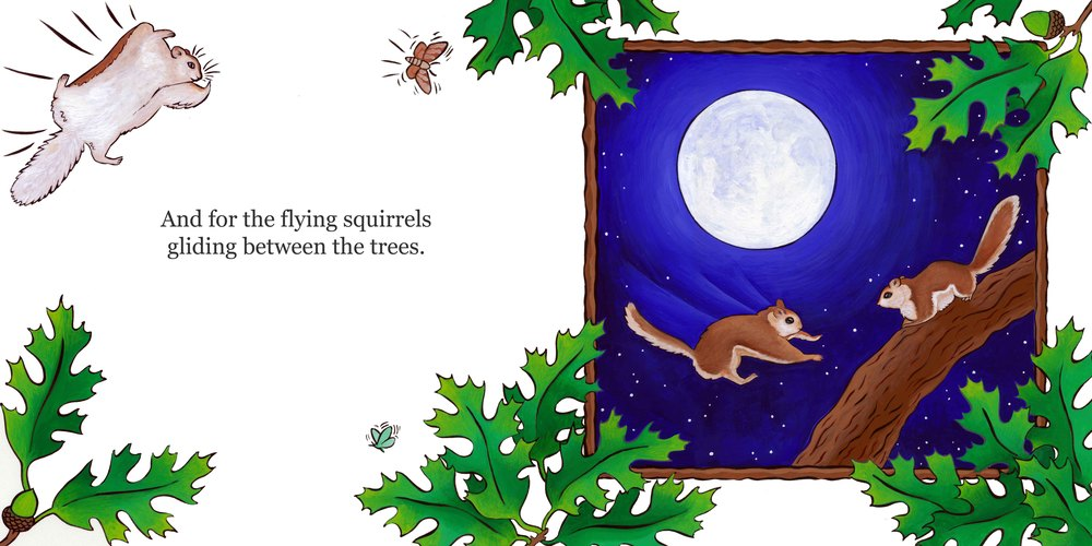 shining moon-flying squirrels.jpg