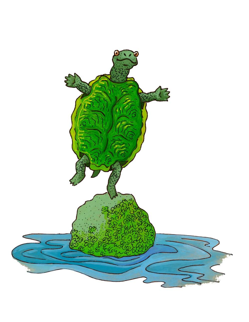 finger rhymes 2 little turtle alpha.jpg