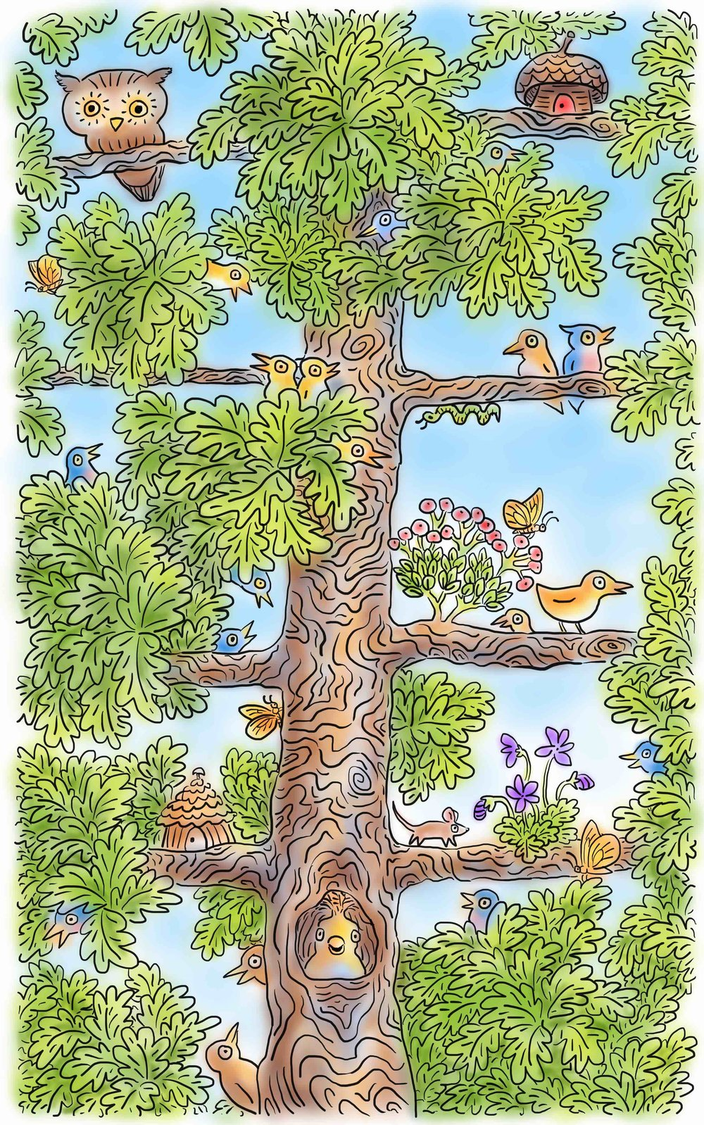 oak tree birds 3.jpeg