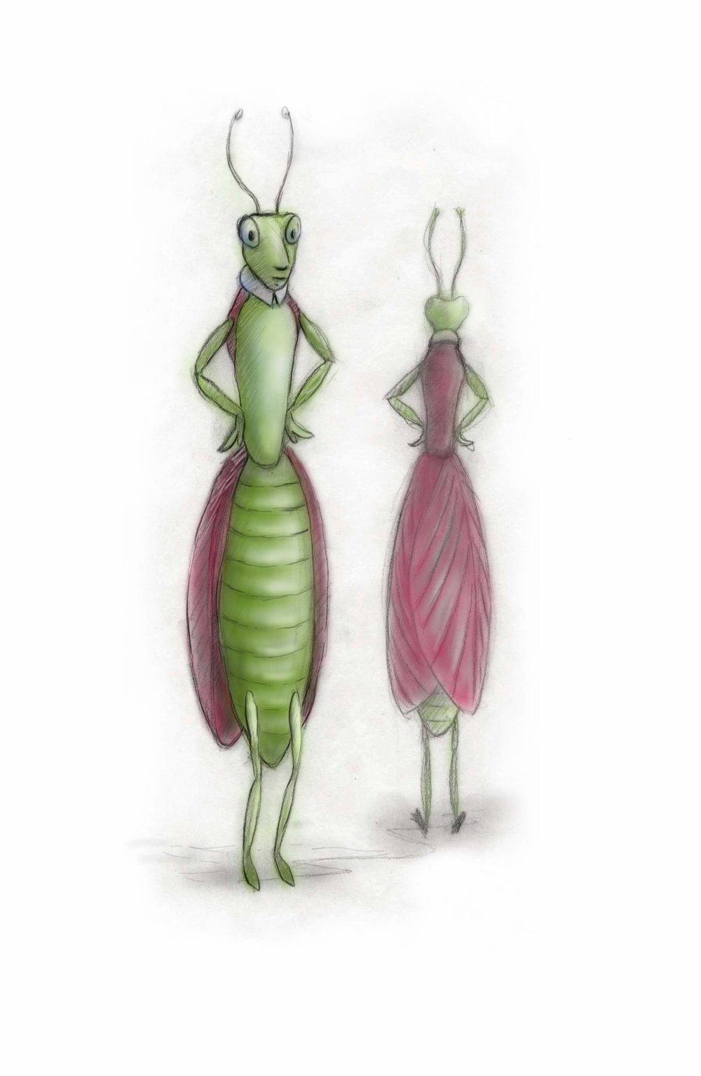 fashion bug praying mantis.jpeg