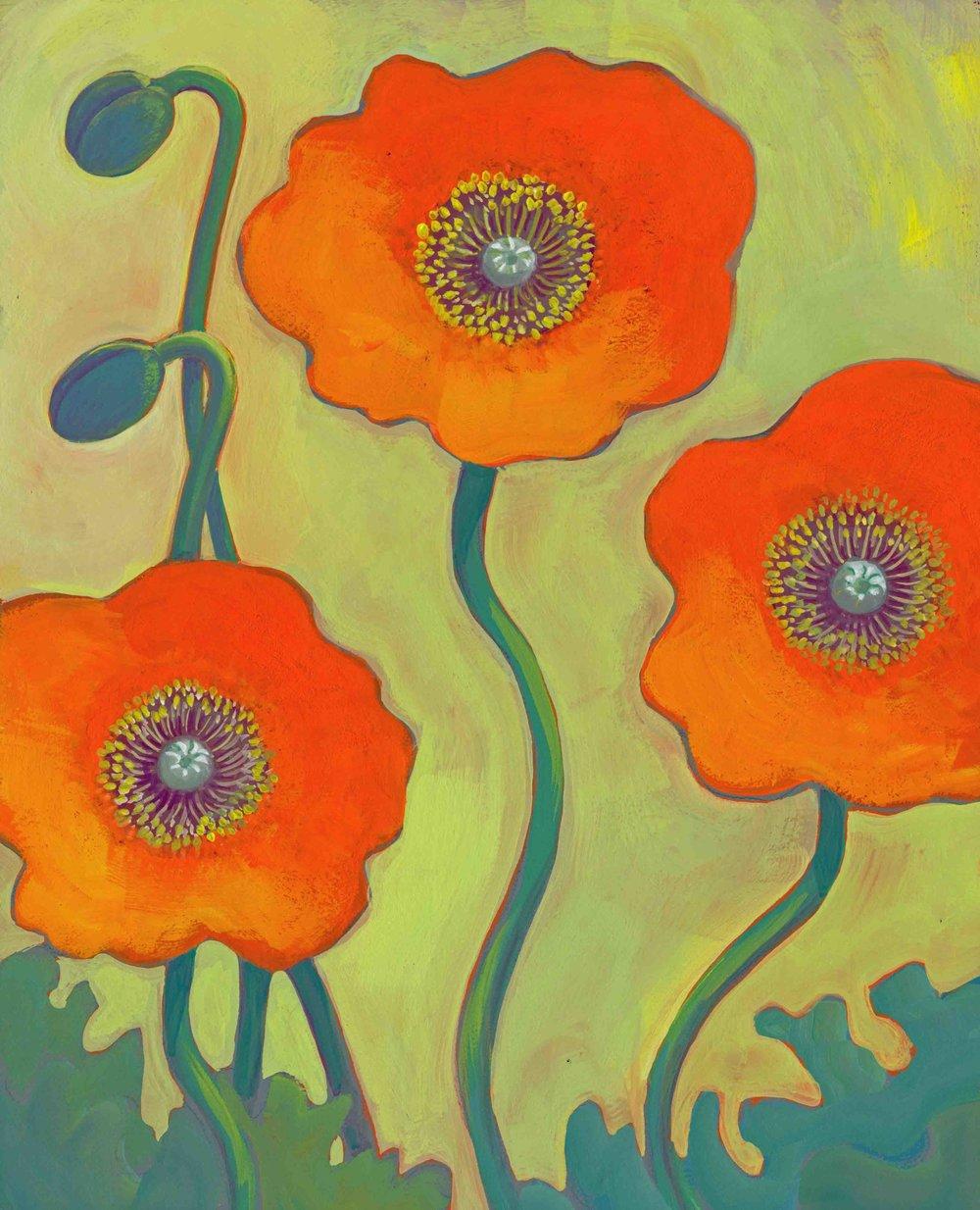 orange iceland poppies 1.jpg