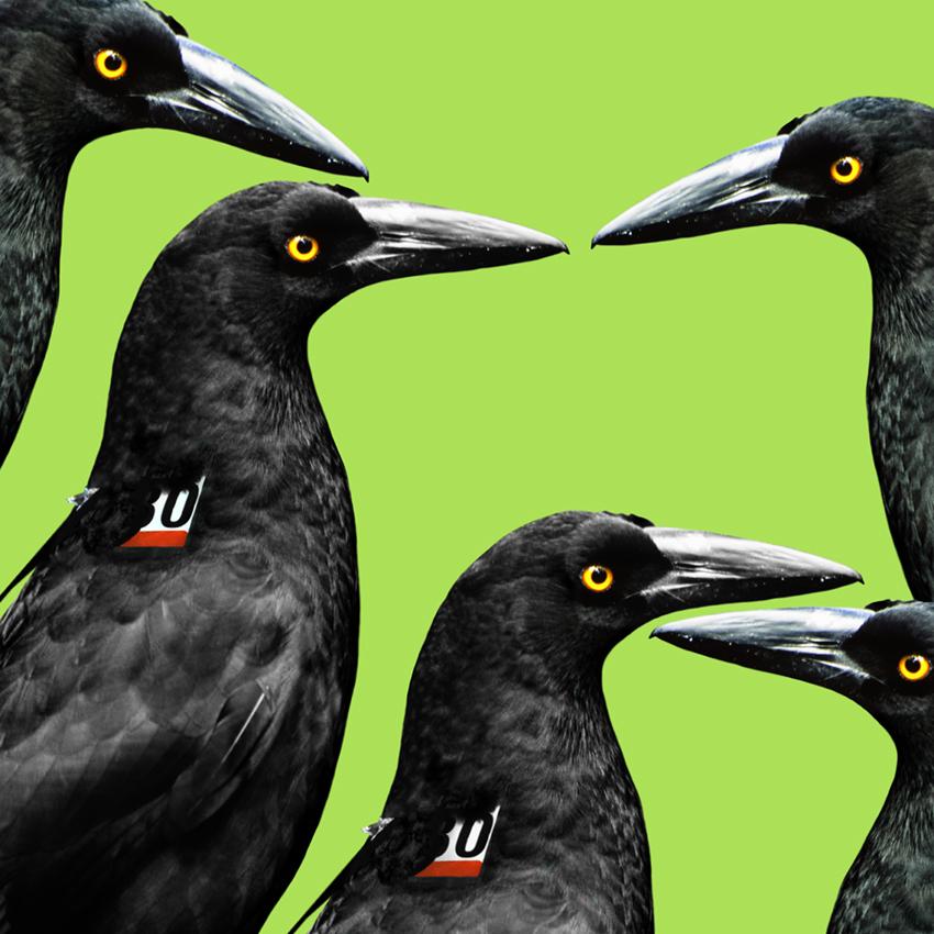 Crow_Christian_Pearson_art.jpg