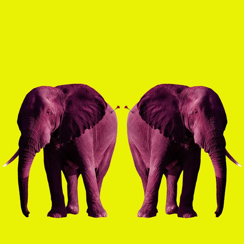 Elephant_Christian_Pearson_art.jpg