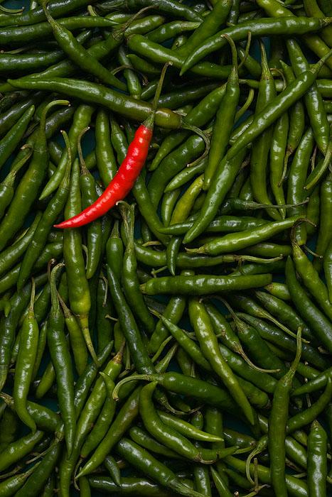 20061011171510_hot chili-700px.jpg
