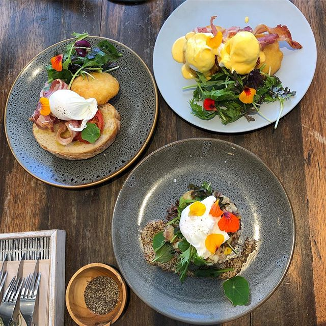 Brunch'n @bambuchiwelly - a hidden gem in Hataitai 🥓 we got the beef cheek hash, eggs bene w bacon and avo and the onsie 🥑 #wellybrunch