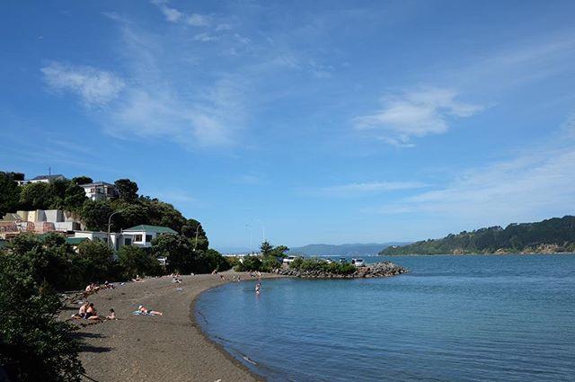 Today i walked about 15 kms n dropped for spent much times to see da beach. คือทุกองค์ประกอบของภาพทำให้ออกมาสวยโดยไม่ต้องประดิษฐ์  #newzealand #wellington #beach #hataitai