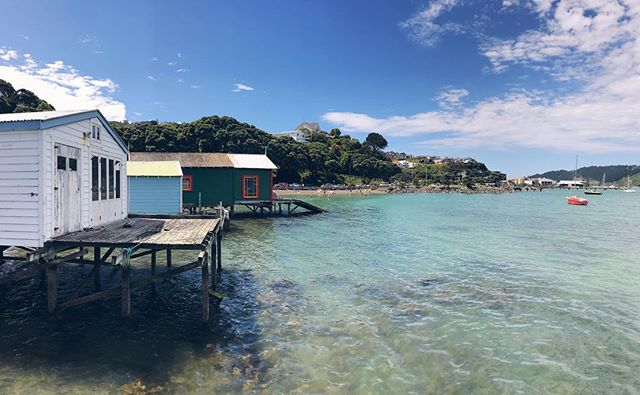 S U N ⛵️ Catching some sun on a sunny Sunday at the boathouse that no one is supposed to live in... 🤣 . . . . #wellington #boatshed #evansbay #hataitai #beach #blue #summer #sunny #sunday #sunnysunday #relax #youcantbeatwellingtononagoodday #aniloveswellington #welly #coolestlittlecapital #nz #newzealand #travelphotography #travelsnaps #instatravel #photooftheday #instagood #thehappynow #lifeisgood