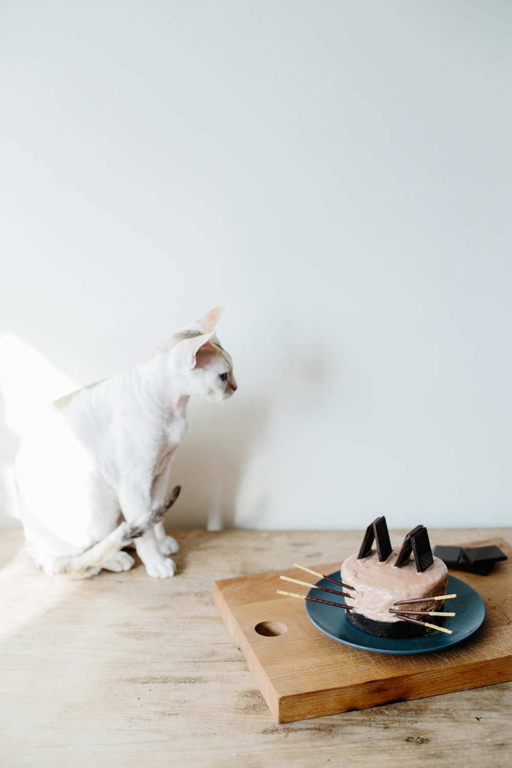 Brownie Ice Cream Cake / Meet Jack + Luna | Erika Rax