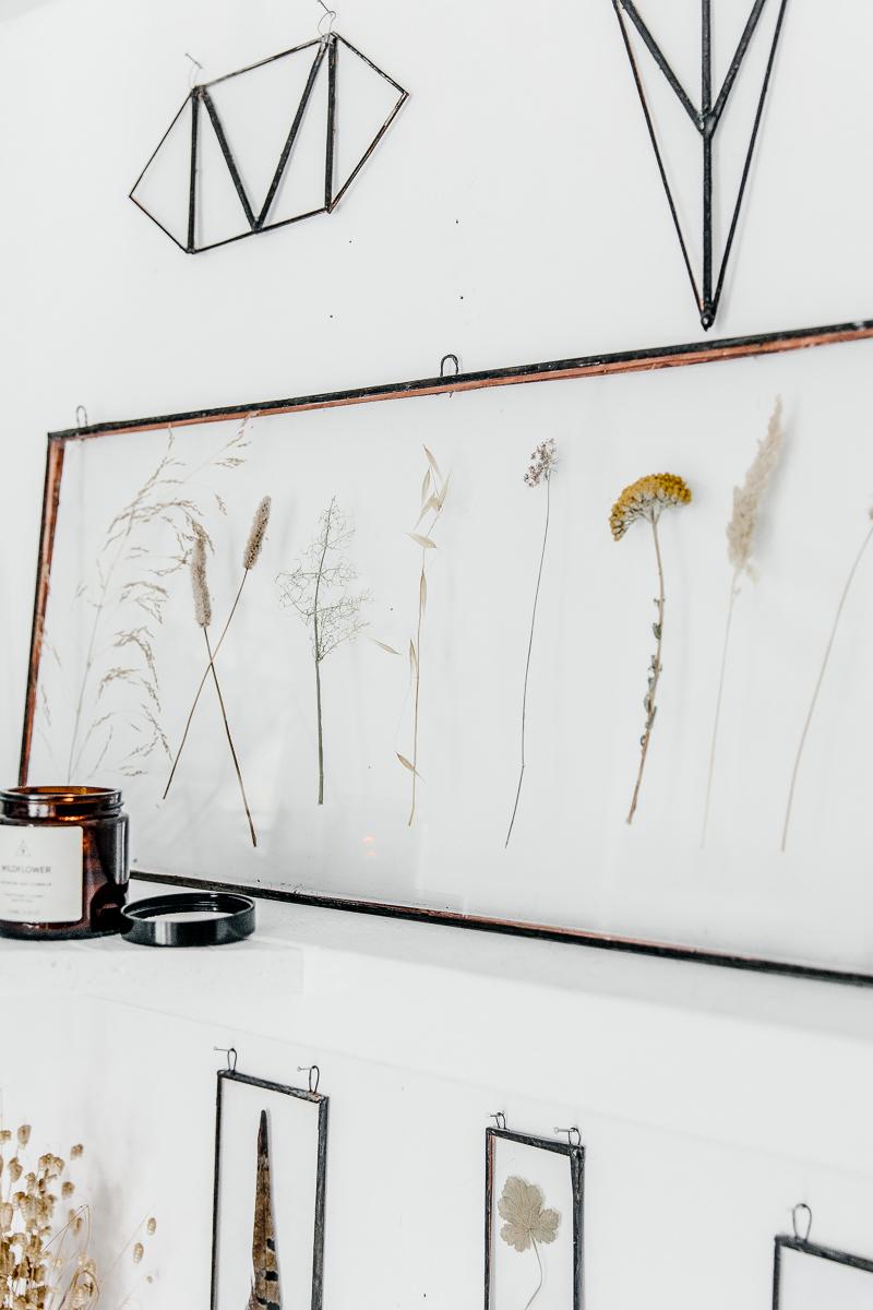 Arma Glass | Erika Rax