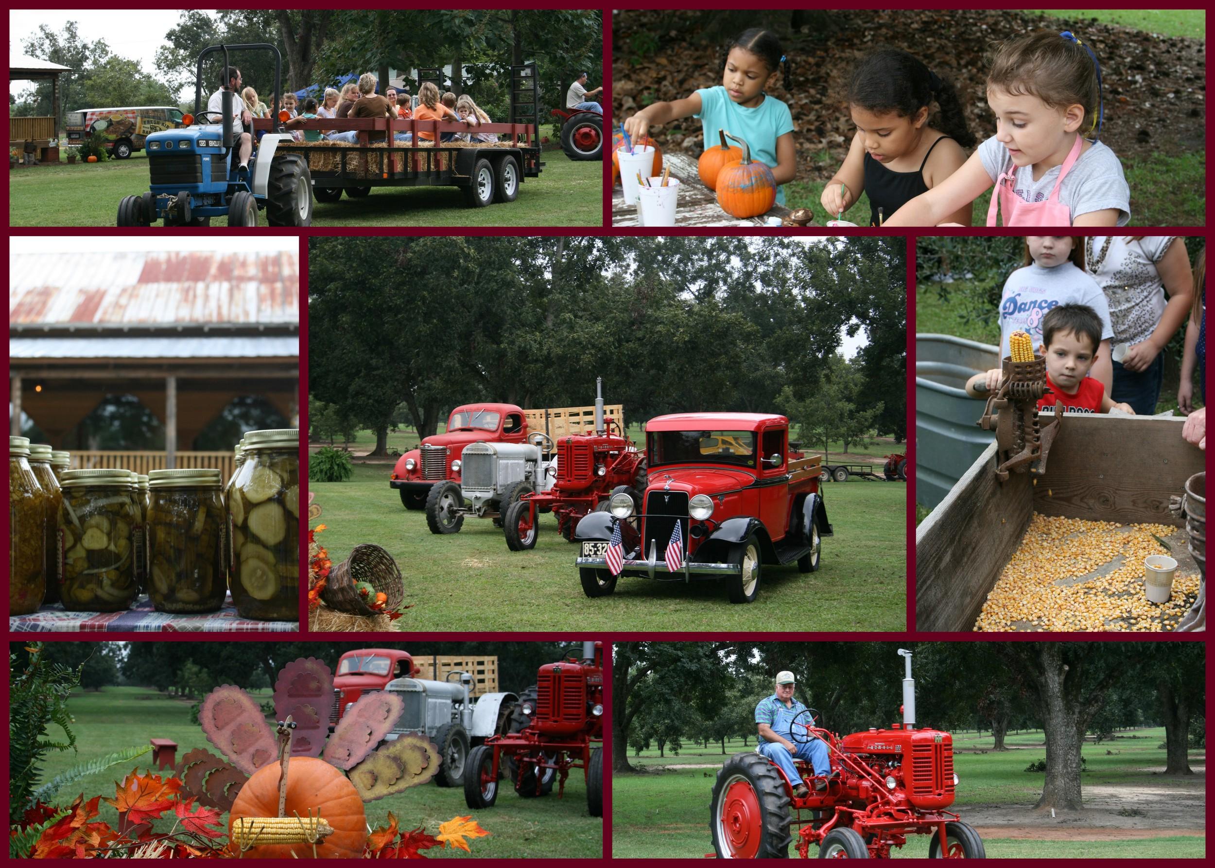 Fall Farm Day at Pineola Farms