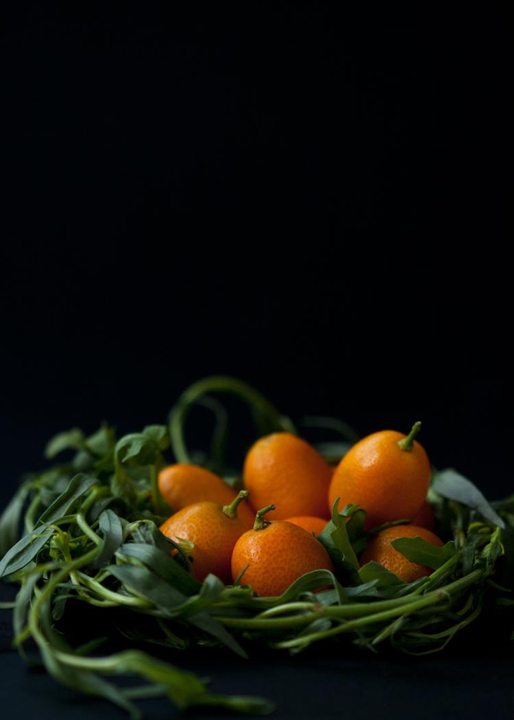 kumquatnestVicinityStudio.jpg