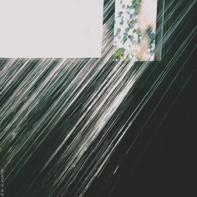 showeredwithlightMNPorter.jpg