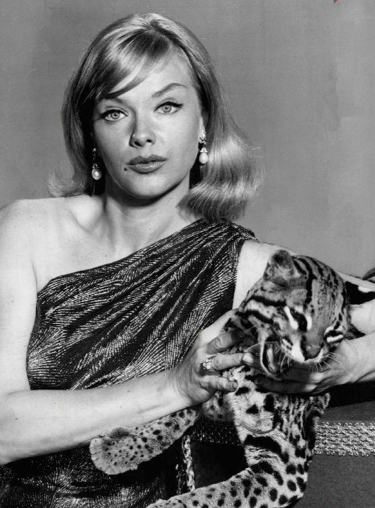 Anne Francis as Honey West with her ocelot, Bruce (image is in the public domain)