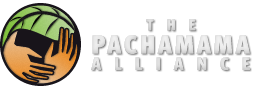 pachamama-logo.png