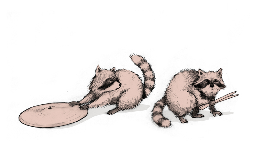 RaccoonsCloseup.jpg
