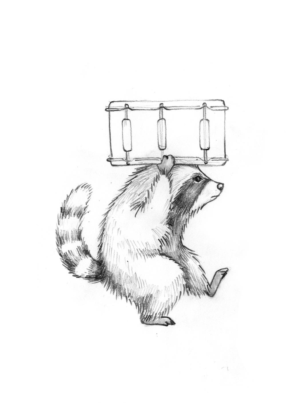 RaccoonsCloseup2.jpg