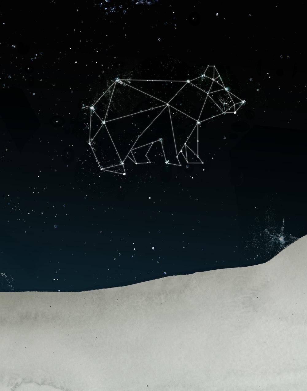 StarBear_01B.jpg