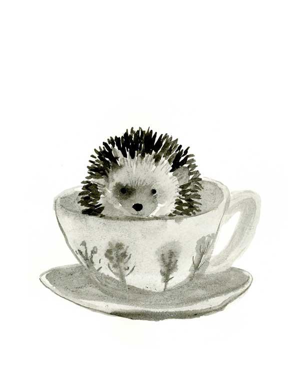 TeacupHedgie2_WEB_CLO.jpg