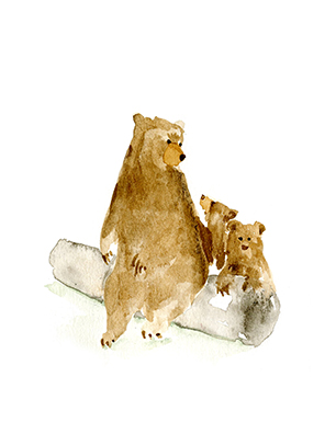 WatercolorBear_cards_Momma_lores.jpg