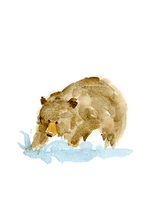 WatercolorBear_cards_Fishing_lores.jpg