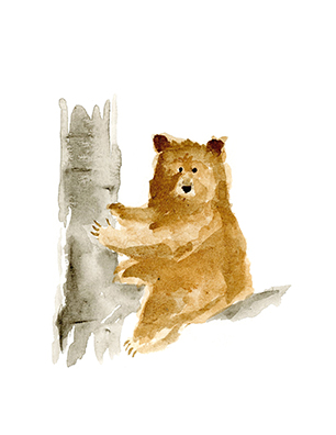WatercolorBear_cards_Tree_lores.jpg