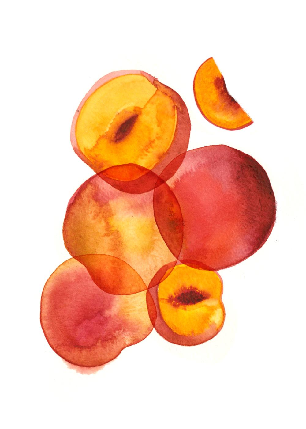Peaches_5x7.jpg