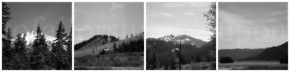 PicMonkey Collage 1aaa.jpg