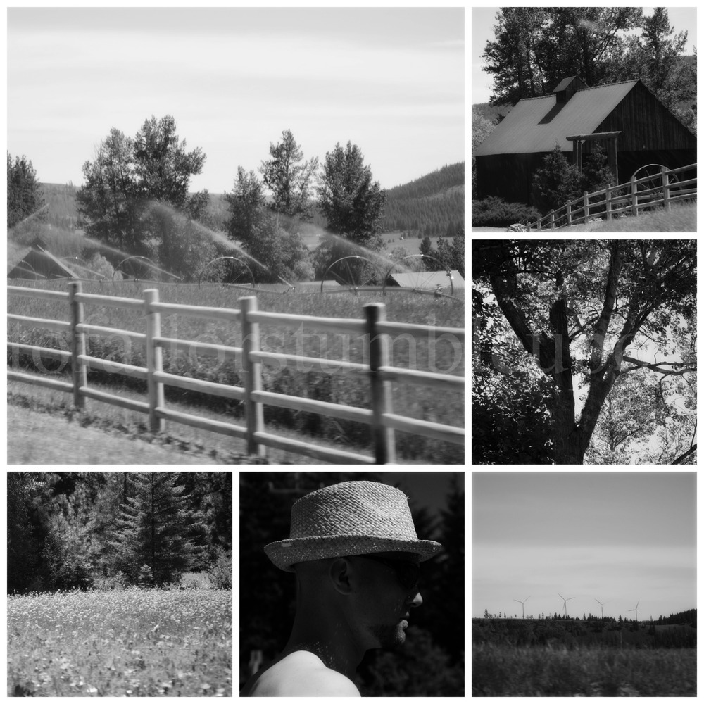 PicMonkey Collage d 2.jpg