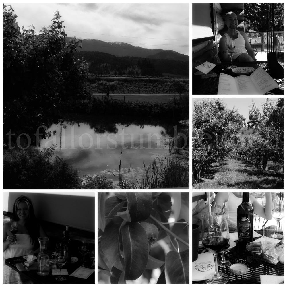 PicMonkey Collage f 2.jpg