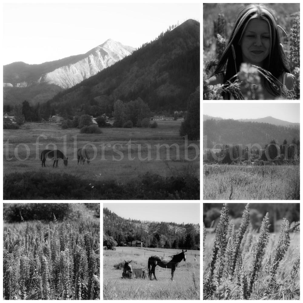 PicMonkey Collage 15 a.jpg
