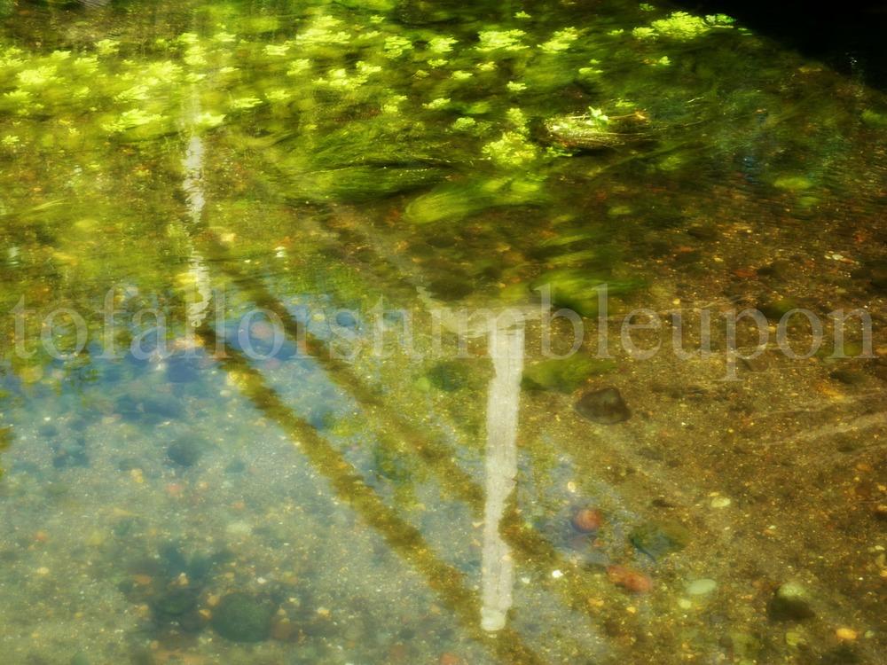 P1030577 edit 2.jpg