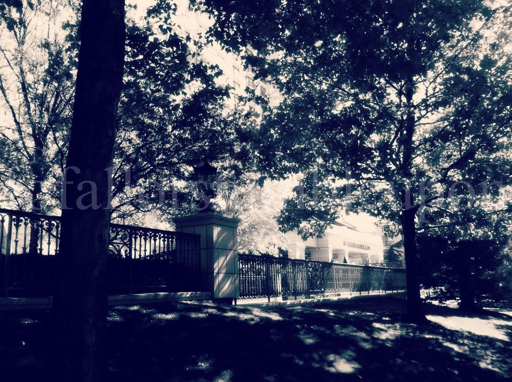 IMG_2279 edit 2.jpg