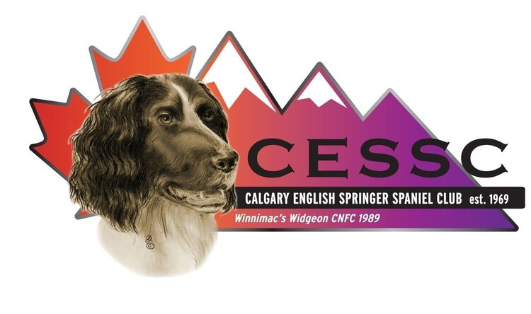 Calgary English Springer Spaniel Club
