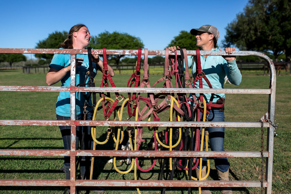 Hudspeth and one of her grooms Emily Christensen organize halters on a gate after letting the horses out into the pasture at the end of the day. In polo, grooms are assistants for the players and have a number of duties that include helping feed and exercise the horses. A groom's most important role is tacking the horses up before a game and helping the players switch horses in between chukkers, the name of the periods by which a polo match is divided.